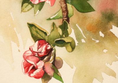 Pruner, Gary – Untitled Hanging Flower