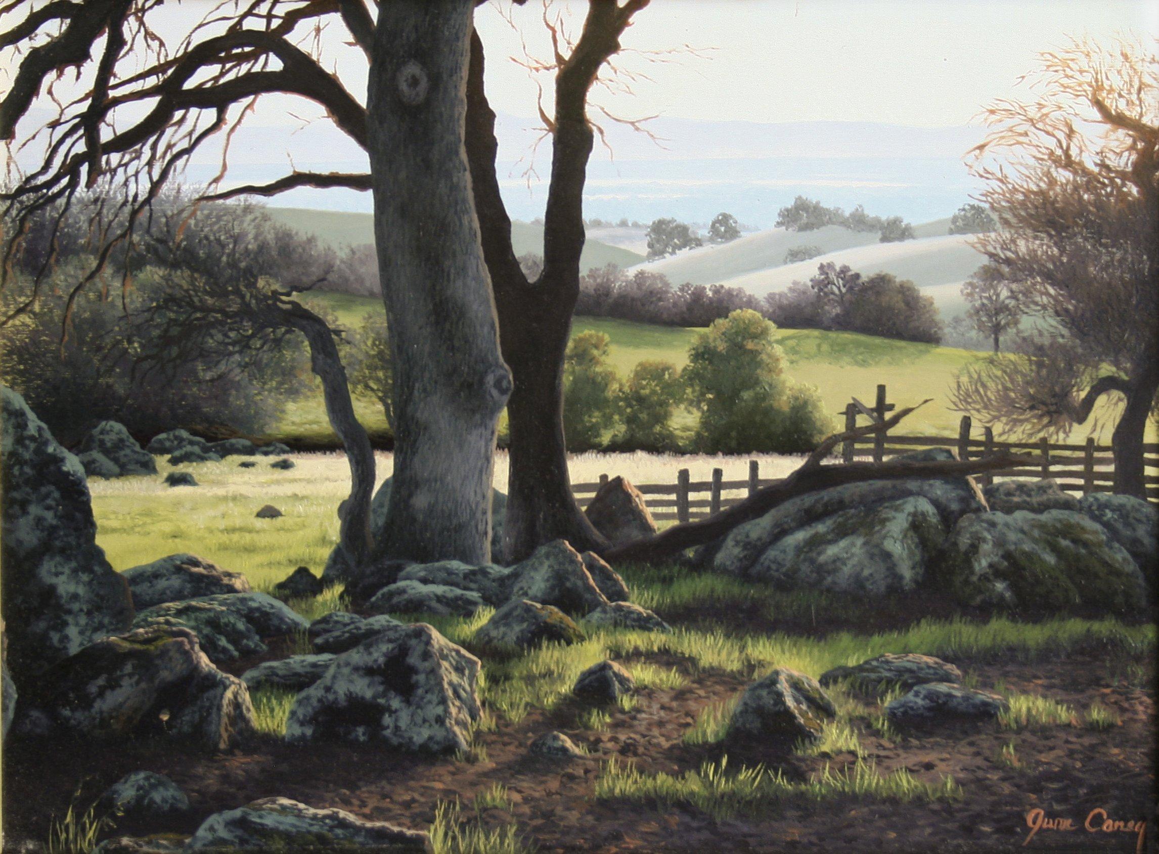Carey, June – Untitled Landscape With Rocks
