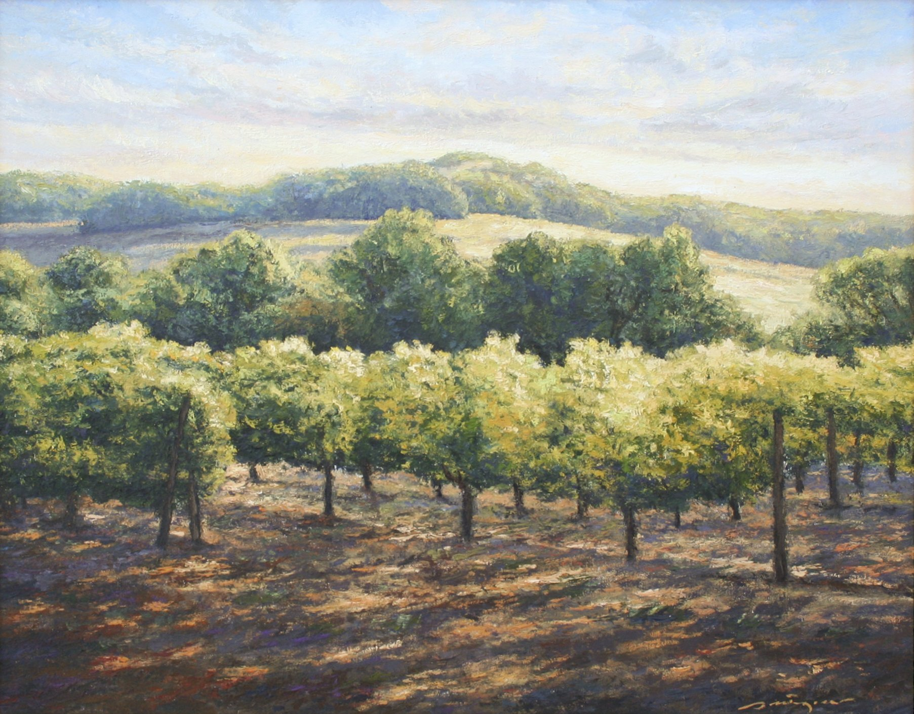 Pettegrew, Peter – Napa Vineyard