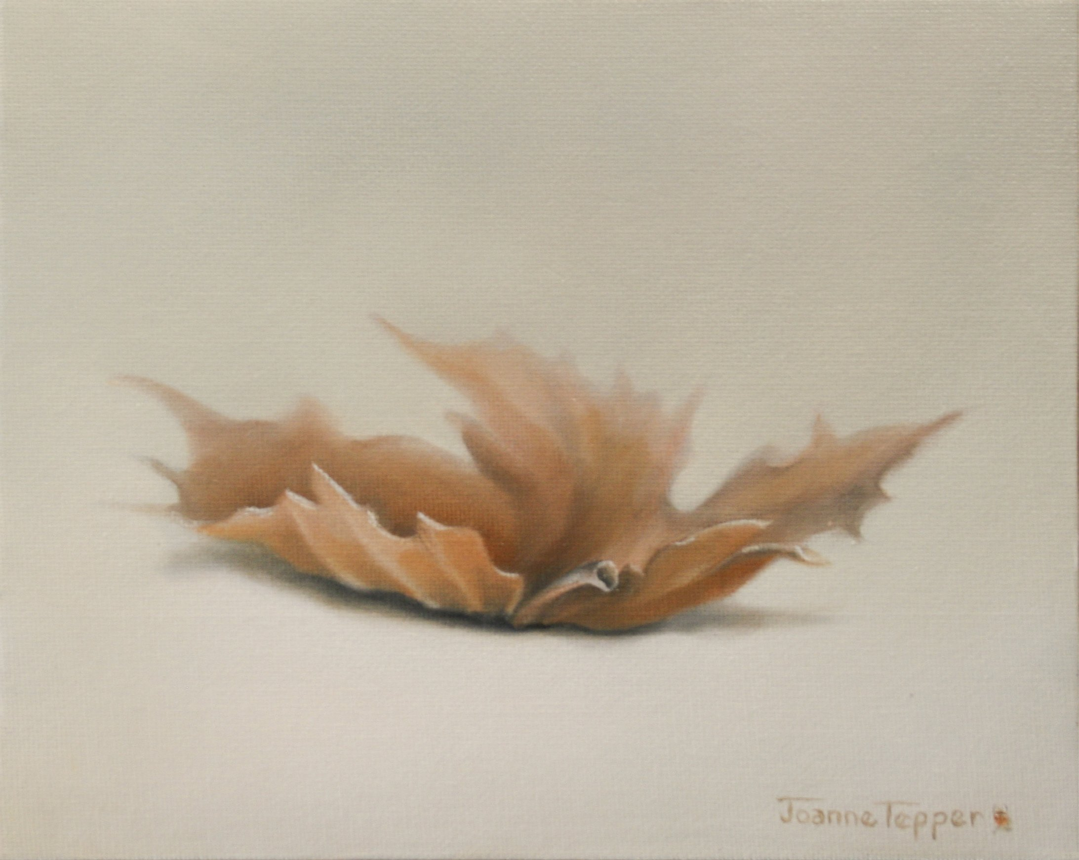 Tepper, Joanne – Sycamore Leaf No. 1, 2013