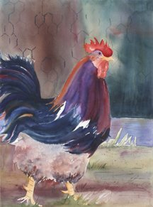 Joyce Laws, Rooster