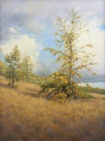Kathy O'Leary – Oak Sapling, 2000