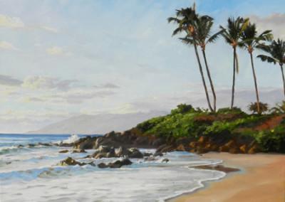 Susan Hoehn, The Beach At Wailea