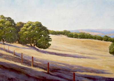 Susan Hoehn, Untitled Foothills & Oaks