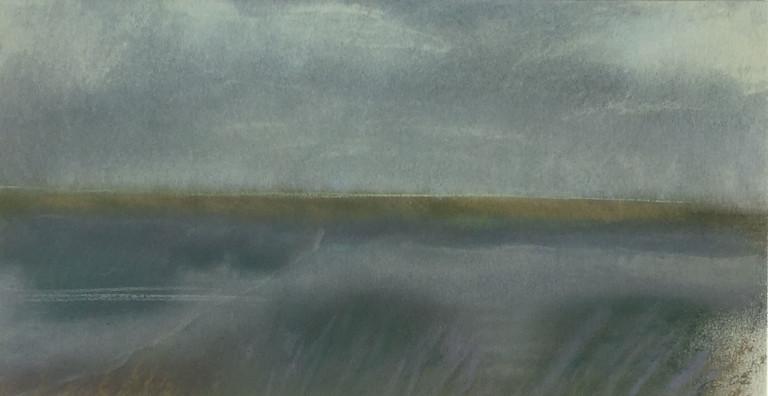 Diana Jahns, Willows Slough Bypass