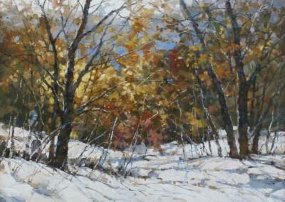 Jiang, Song – First Snowfall