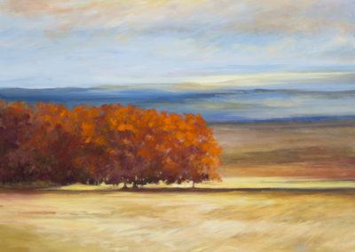 Sheila Finch, Sky And Earth